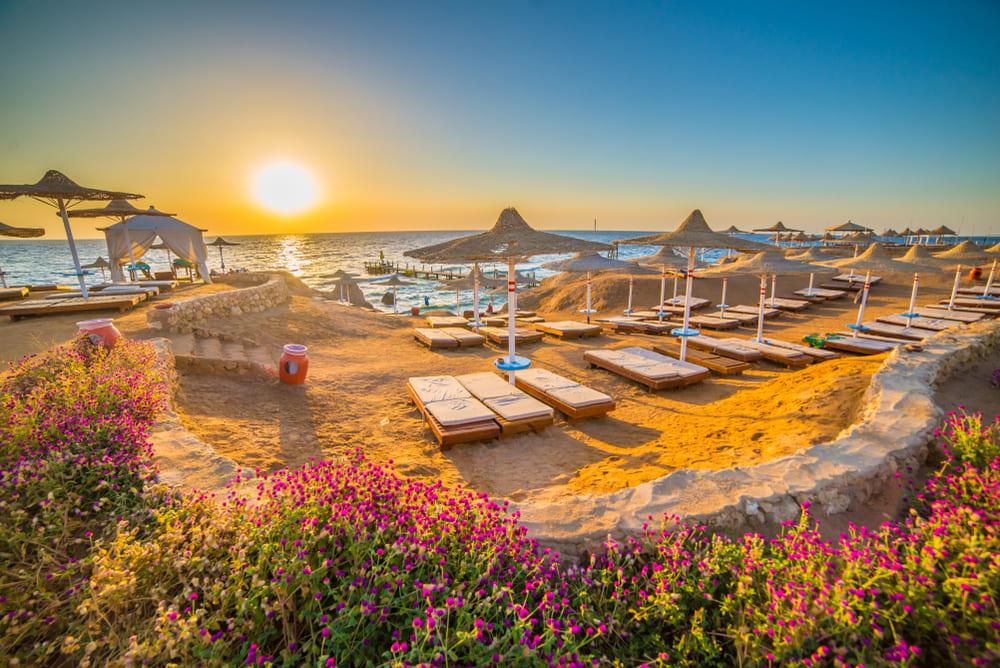 Отпуск в Египте в августе