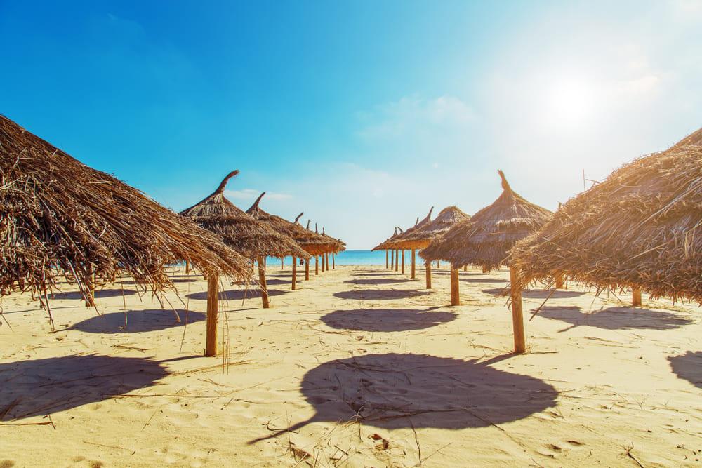 Отпуск в Тунисе в августе